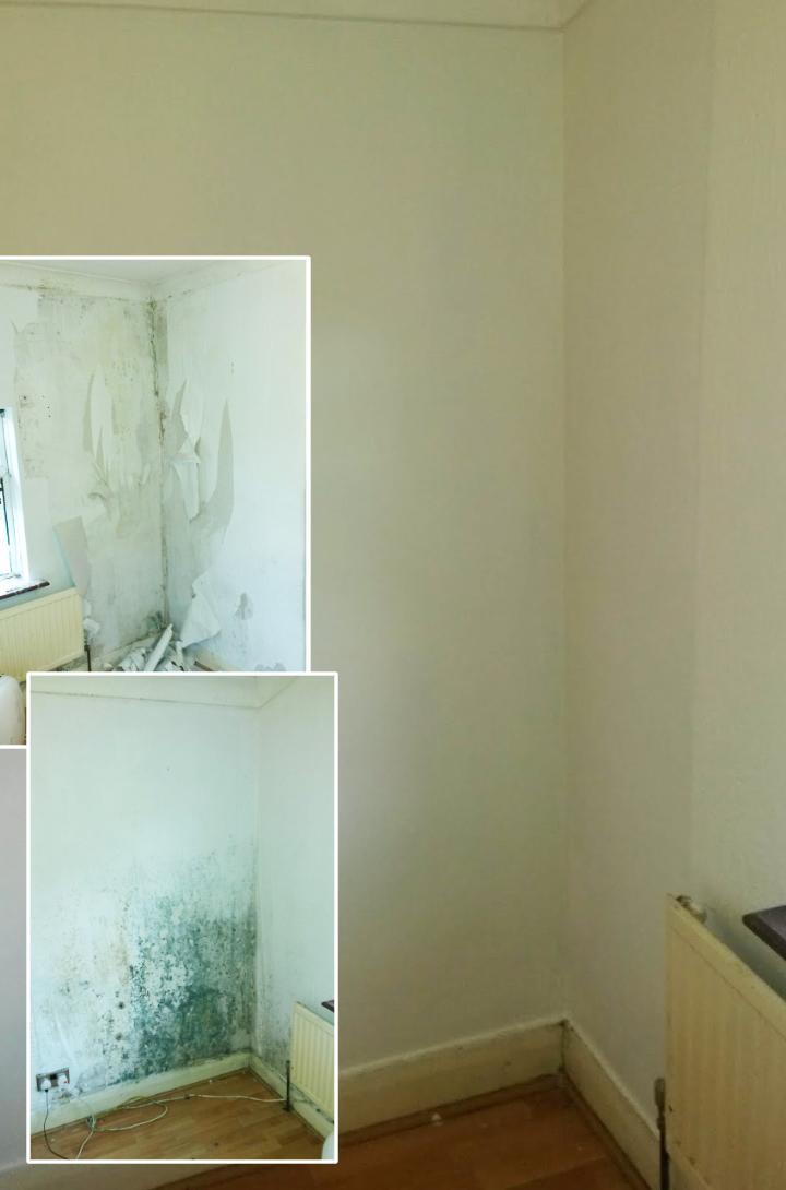 Damp wall repair